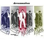 Duran Duran - Dreamnation (cover)