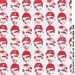 Duran Duran - HOB Orlando 2000 (cover)