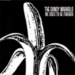 The Dandy Warhols - We Used To Be Friends (cover)