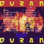 Duran Duran - The Point Dublin 2004 (back cover)