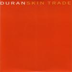 Duran Duran - Skin Trade (cover)