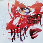 Duran Duran - Nice (cover)