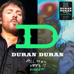Duran Duran - All You Need Is Everett (cover)