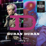 Duran Duran - All You Need Is Los Angeles (cover)