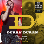 Duran Duran - All You Need Is New York (cover)