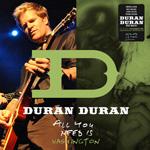 Duran Duran - All You Need Is Washington (cover)