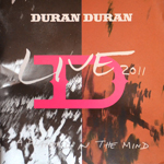 Duran Duran - A Diamond In The Mind (cover)