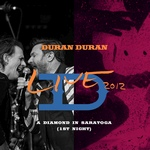 Duran Duran - A Diamond In Saratoga (1st Night) (cover)