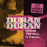 Duran Duran - Before The Rain In Vienna (cover)