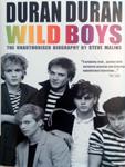 Duran Duran - Wild Boys (cover)