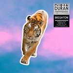 Duran Duran - Danceophobia In Brighton (cover)