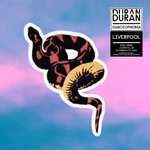 Duran Duran - Danceophobia In Liverpool (cover)