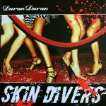 """Duran Duran - Skin Divers 12"""" (cover)"""