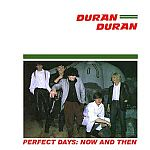 Duran Duran - Perfect Days: Now And Then (cover)