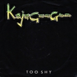 Kajagoogoo - Too Shy (cover)