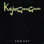 Kajagoogoo - Too Shy (cover)