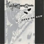 Kajagoogoo - Hang On Now (cover)