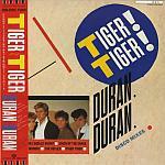 "Duran Duran - Tiger Tiger 12"" (cover)"