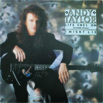 "Andy Taylor - Life Goes On 12"" (cover)"