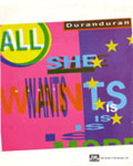 Duran Duran - All She Wants Is (cover)