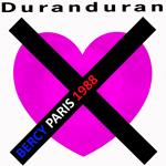 Duran Duran - Bercy Paris (cover)
