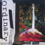"Duran Duran - Ordinary World 12"" (cover)"