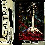 "Duran Duran - Ordinary World 7"" (cover)"