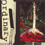 Duran Duran - Ordinary World (cover)