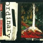 Duran Duran - Ordinary World (cover)