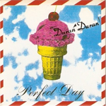 Duran Duran - Perfect Day (cover)