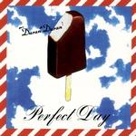 "Duran Duran - Perfect Day 7"" (cover)"