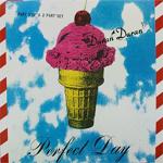Duran Duran - Perfect Day (cover)